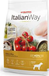 Giuntini Italian Way Classic Fit Medium 12kg